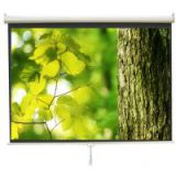 Screen For Home Cinema Screen/manual Projection Screen/pull-down Projection Screen