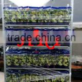 hot galvanized flower transport cart for sale plant transport cart,garden cart,display flower racks