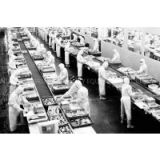 Seafood and fish processing equipment