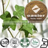 Health Food Plant Extract HPLC 5% to 10%Hedera coside C Helix Extract(Ivy Leaf Extract) with ISO Kosher Certificate