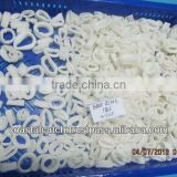 FROZEN SQUID RINGS BLANCHED IQF