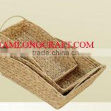 WATER HYACINTH BASKET/ TRAY TCC-BK18