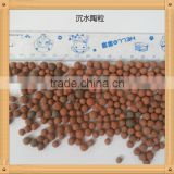 leca expanded clay in soilless cultivation hydro expanded clay