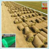 Agriculture Supplies-Turf Growing netting-turf grass harvested earlier
