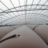 SGS approved biogas balloon for anaerobic digester