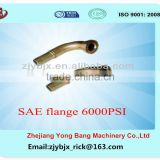 hydraulic pipe fittings/SAE 6000 PSI Flange
