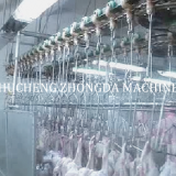 full Chicken slaughter house machine Line FOR Big Slaughterhouse