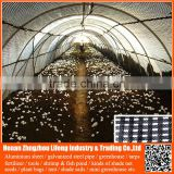 cheap agricultural / commercial / hydroponic systems / industrial / hobby / prefabricated / tunnel plastic greenhouse used film