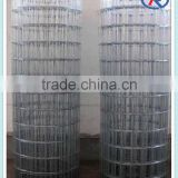 electric/hot dip Galvanized Welded Wire Mesh made in hebei china
