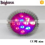 12w E27 par38 led grow light bulb 7:2 with track light system for family indoor plant light