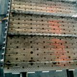 Stainless steel chain plate production of mung bean conveyor line