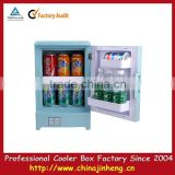 mini portable car refrigerator,mini thermoelectric cooler and warmer,mini car cooler box
