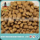 roasted apricot kernel from China