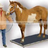 Movable Equine Scale