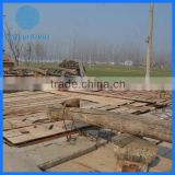 Customized Timber mill wood logs