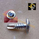 China top quality Truss self drilling screw