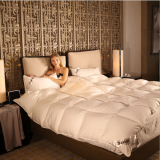 China Factory Sale Polyester Comforter Sets