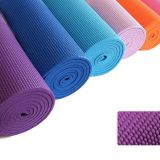 Guangdong extra thick gmy mat fitness mat