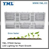 IP65 special spectrum commercial Hydroponics greenhouse indoor grow lighting/High quality aluminium led grow light