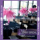 FTH14 Fushia Ostrich Decorative Feathers For Wedding