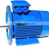GOST standard electric motor (ANP315S4)