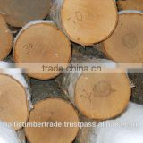 Baltic Birch logs from Russia, ABC mix