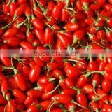 Dried Goji Berries 280-750 size Grade A or Grade B