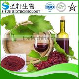 red wine extract powder, polyphenols 30%-60%