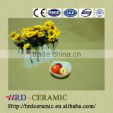 wholesale High Quality colorful hotel used ceramic dish