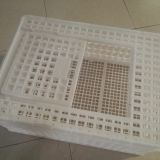 Plastic crates for poultry transportation and egg transportation