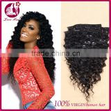 Deep Wave Clip In Human Hair Extensions 100g Full Head Brazilian Virgin Human Hair Clips Ins Extension African American