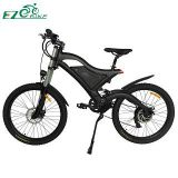 Electric Bike TDE15