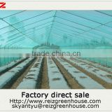 15 years warranty 100% bayer reinforced cheap film agriculture single span tunnel greenhouse