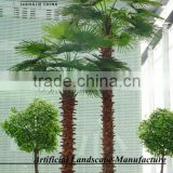 SJH4474 Palm tree with cheap price palm tree for OUTDOOR decoration