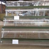 industrial galvanized steel Hot Galvanized Automatic Chicken Cage for growing broilers and pullets