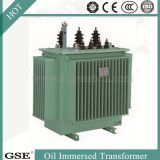 Oil Immersed Saving Energy Transformer/Power Transformer with ISO, TUV and CE Standard