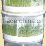 JL260C Automatic Seed/ Mung/Soya/ Kitchen/Organic /Water circulating/ Sprout Machine