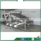 Seafood Processing Shrimp Grading Machine