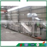 Broccoli Treatment Production Line Vegetable and Fruit Drying Equipment