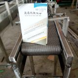 Small density mesh belt conveyor line