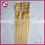 Wholesale Factory Price Hot Sell Double Weft 6A Virgin Remy Brazilian Human Clip In Hair Extension