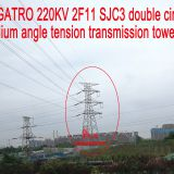 220KV 2F11 SJC3 double circuit medium angle tension transmission tower