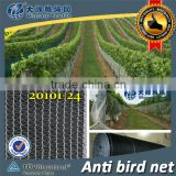 (20 years Shanghai factory) hot season , New arrival, Agriculture HDPE knotted mesh bird control net , 15 GSM / 20101-15
