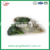 Shandong high quality fresh broccoli for sale 1100-1200g/pc