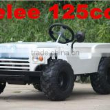 China Zhejiang Yongkng City Telee Vehicle atv 125cc