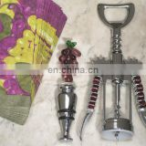 Glass Grape Wine Opener and Stopper Set