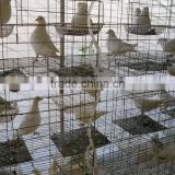 galvanized Pigeon Breeding Cage For Poultry Farms