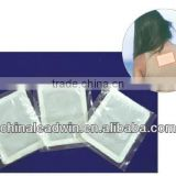 disposable heat pad