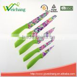 WCK609 5 pcs set Kitchen Knives artwork painting blade PP handle , hot sale