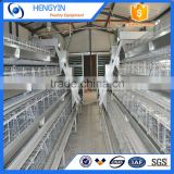 High quality A type Q235 steel metal wire chicken cages / Uganda poultry farm automatic chicken layer cages